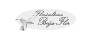 Floricultura Beija-Flor